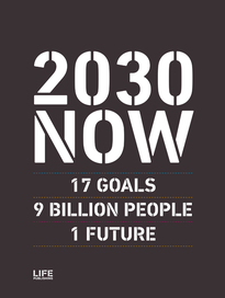 2030 NOW (English edition)