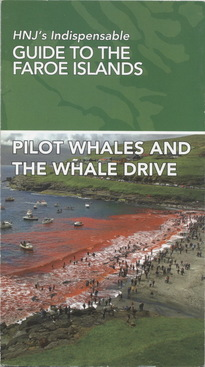 Pilot Whales And The Whale Drive